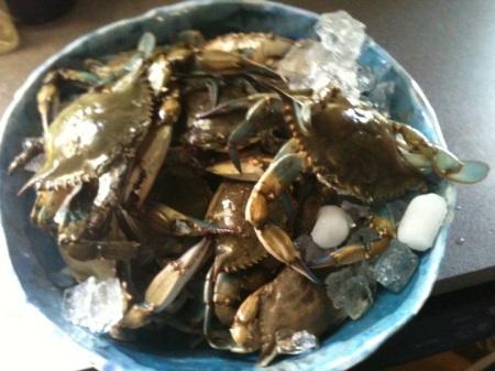 crabs 1